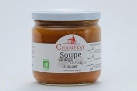 Soupe Courge-Châtaigne à diluer Bio