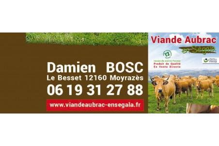 Damien Bosc