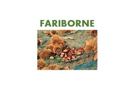 Fariborne