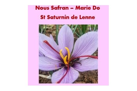 Nous safran - Marie DO